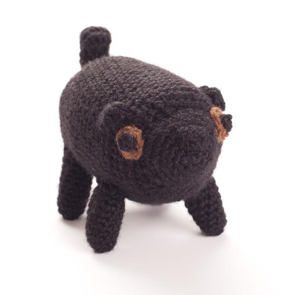black-pug-2